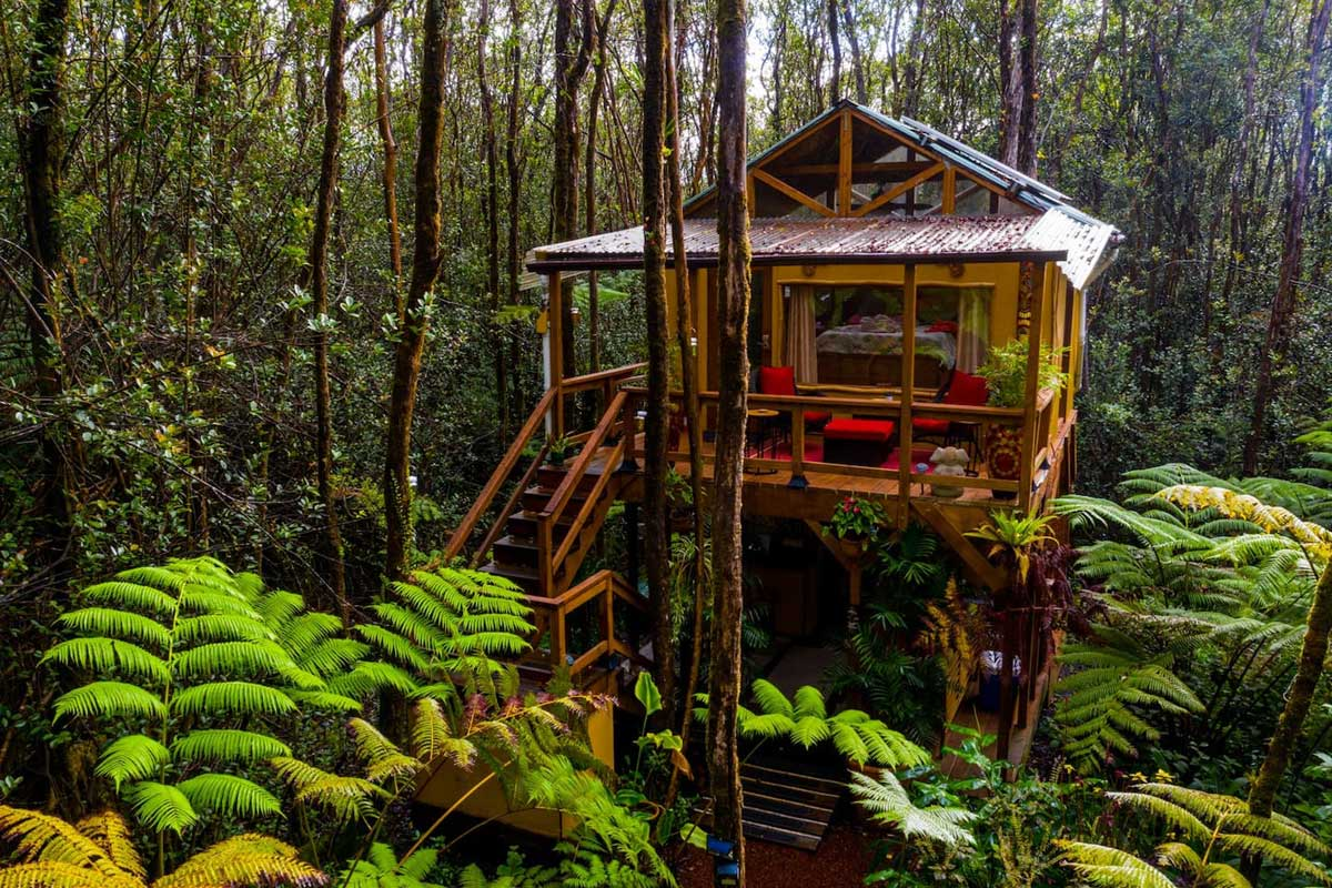 treehouse off the grid in hawaii